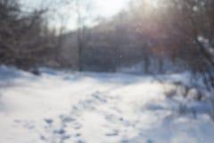 Unscharfer Hintergrundwaldschneewinter Stockfoto