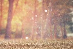 Unscharfes abstraktes Foto der Lichtexplosion unter Bäumen und Funkeln bokeh beleuchtet gefiltertes Bild und gemasert lizenzfreies stockfoto
