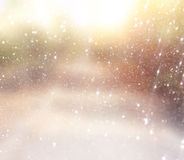 Unscharfes abstraktes Foto des Lichtes barst unter Bäumen Lizenzfreies Stockbild