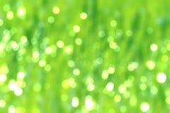 Unscharfes nasses Gras des abstrakten Hintergrundes schattiert üppige Wiese bokeh stockfoto