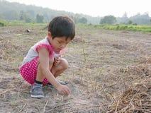 Unschuldiges kleines asiatisches Baby, das versucht, trockene Gräser aus den Grund zu pflanzen, um sie lebendig zu halten stockfotografie