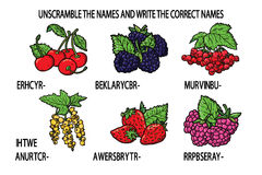Unscramble names berries game. Stock Photo