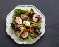 Unseasoned  greens, mushrooms, and carrots salad white plate dar. Unseasoned organic mixed greens, carrots and mushrooms salad  in white plate bowl, on dark Stock Photography