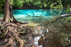 Unseen blue pool Royalty Free Stock Photography