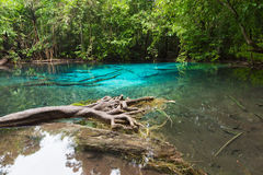 Unseen Emerald Pool locate in deef forest Stock Images
