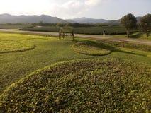 Unser Bauernhof lizenzfreies stockfoto