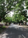Unsere Dorf Straße, die ehrfürchtigen Moment s sieht stockfoto