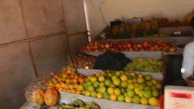 Unsere Reise nach Indien zum Zustand von Goa stock video footage