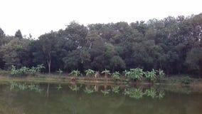 unsere Teichseite stockfotos