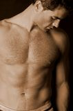 Unshaven male torso. Shirtless male model with a 5 o'clock shadow and hairy chest Stock Image