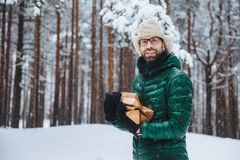 Unshaven smiling male holds pile of firewood, going to make fire to warm himself in frosty weather, spend winter day in forest, ha. S picnic with friends outdoor royalty free stock photo