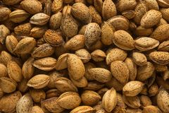 Unshelled almonds. Concept - healthy eating, vegetarianism. Royalty Free Stock Image