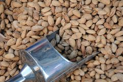 Unshelled Almonds and Metal Scoop Stock Photography
