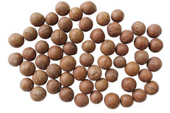 Unshelled macadamia Nuts. Group of unshelled macadamia Nuts roast mix with salt on white background Royalty Free Stock Photos