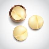 Unshelled macadamia nuts Stock Photo