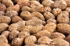 Unshelled peanuts. Heap of unshelled peanuts as background, closeup Stock Photography