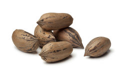 Unshelled pecan nuts Royalty Free Stock Photography
