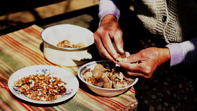 Unshelled and Peeling Walnuts ,  Version 2. Unshelled and Peeling Walnuts by Granny's Hands.A walnut is the nut of any tree of the genus Juglans (Family stock video