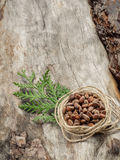 Unshelled pine nuts on aged wood Royalty Free Stock Photo