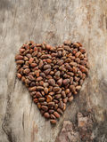Unshelled pine nuts in form of heart on aged wood Stock Photos