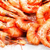 Unshelled tiger shrimps as gourmet seafood macro. Group of Shri Royalty Free Stock Photo