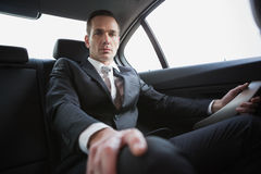 Unsmiling businessman sitting in the back seat Royalty Free Stock Photo