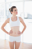 Unsmiling fit brown haired model in sportswear posing with hands on the hips Stock Photography