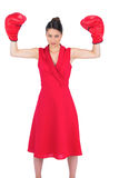 Unsmiling gorgeous brunette in red dress wearing boxing gloves Royalty Free Stock Images