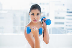 Unsmiling toned brunette holding dumbbells Royalty Free Stock Photography