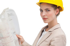 Unsmiling woman architect Stock Photos