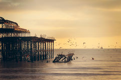 Unsplash.com – Water Ocean Wood Pier Dock Dusk Orange Light Birds Royalty Free Stock Images