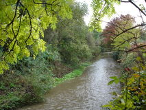 Unspoiled natural urban stream. Eastern Manchester urban stream - unspoiled and natural Stock Photography