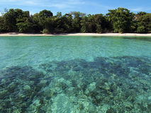 Unspoiled strand med turkosvatten royaltyfri bild