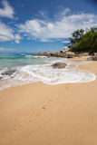 Unspoiled tropical beach in Sri Lanka. Royalty Free Stock Image
