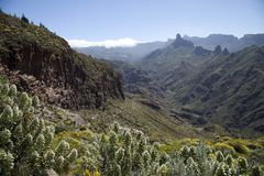 Stunning nature in the highlands of Gran Canaria, canary island under Spanish flag. royalty free stock photography