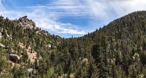 Unspoilt wilderness of Pikes Peak. A beautiful valley visible from the Cog Railway near Pikes Peak in Colorado Stock Images
