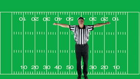 Unsportsmanlike Conduct, green screen with field. Man dressed as a football official signaling Unsportsmanlike Conduct stock footage