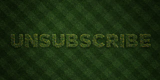 UNSUBSCRIBE - fresh Grass letters with flowers and dandelions - 3D rendered royalty free stock image Stock Photography