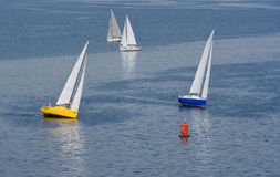 Unsuccessful turn in yachting race. On a summer river Royalty Free Stock Photo