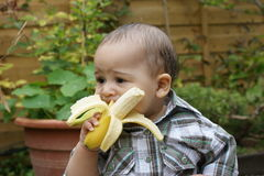 Unsure baby and banana 2 Royalty Free Stock Photos