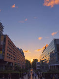 UNSW Sunset Stock Images