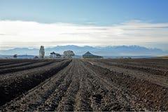 Unten auf dem Bauernhof Stockfoto