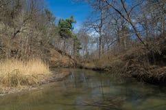 Unten The Creek Stockfotografie