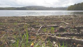Unten durch den See lizenzfreies stockfoto