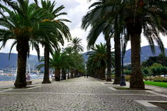 Unten entlang der Promenade im La Spezia, Italien Lizenzfreie Stockfotografie