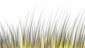 Unten im Gras Stockfotos