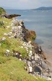 Unten schauen zum Meer Stockfoto