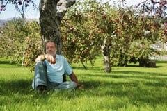 Unter dem Apfelbaum Stockfotos