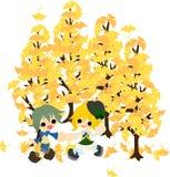 Unter dem Baum von ginkgo-2 Stockfoto