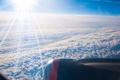 Unter dem Flügel Lizenzfreies Stockfoto